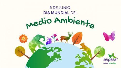 Se celebrará la Semana del Ambiente en modo virtual