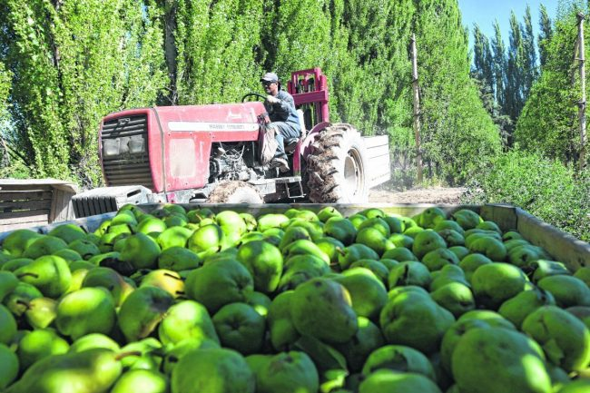 Río Negro: La Emergencia Frutícola vuelve a estar en la agenda del Gobierno Nacional