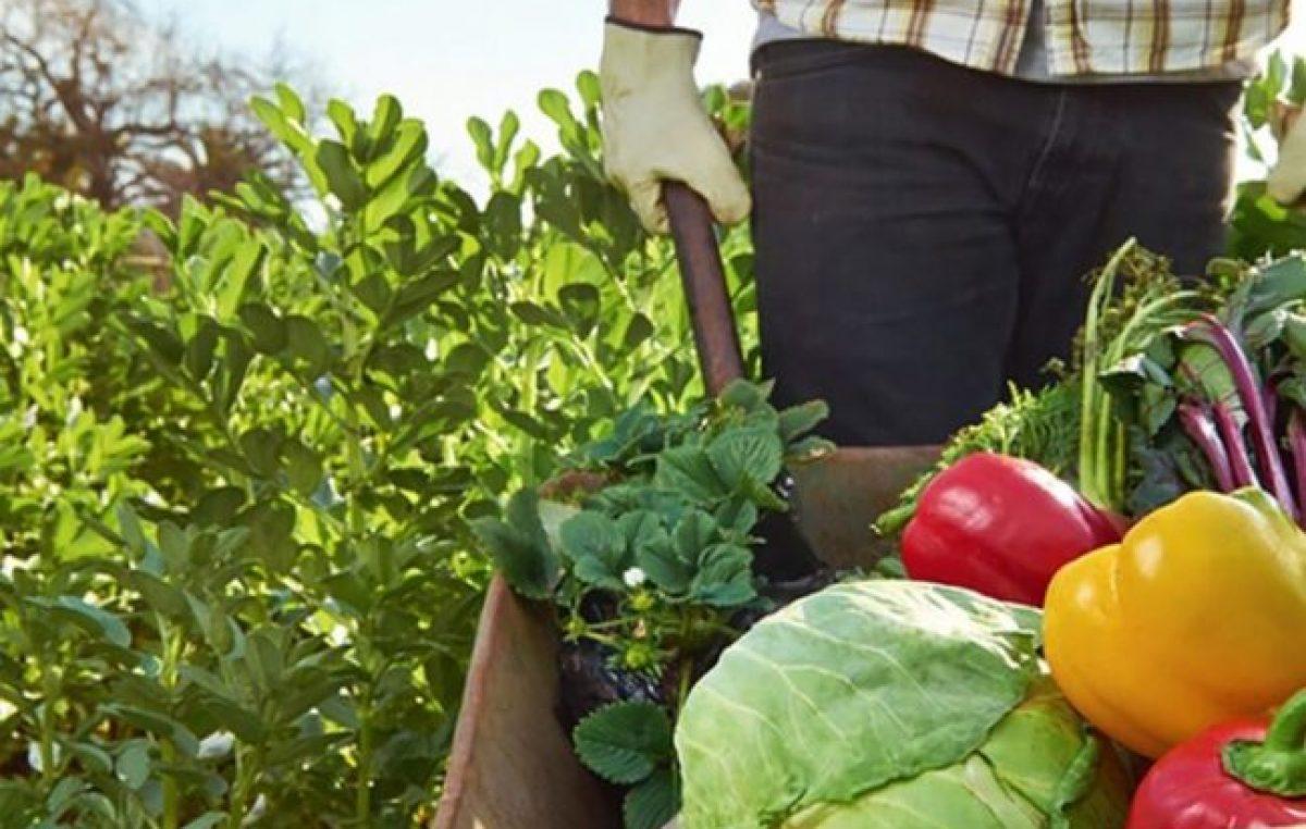 Santa Fe invertirá 20 millones de pesos en líneas para el desarrollo de la agricultura familiar