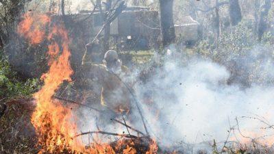 El delta arde: estiman que hay unas 200 mil hectáreas bajo cenizas