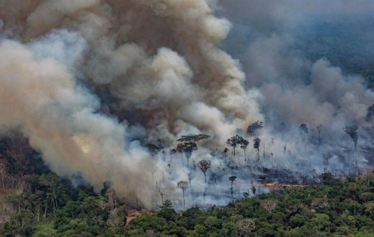 Bolsonaro dice que no crecieron los incendios en la Amazonía