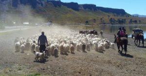 Neuquén adhirió a la ley nacional de Agricultura Familiar