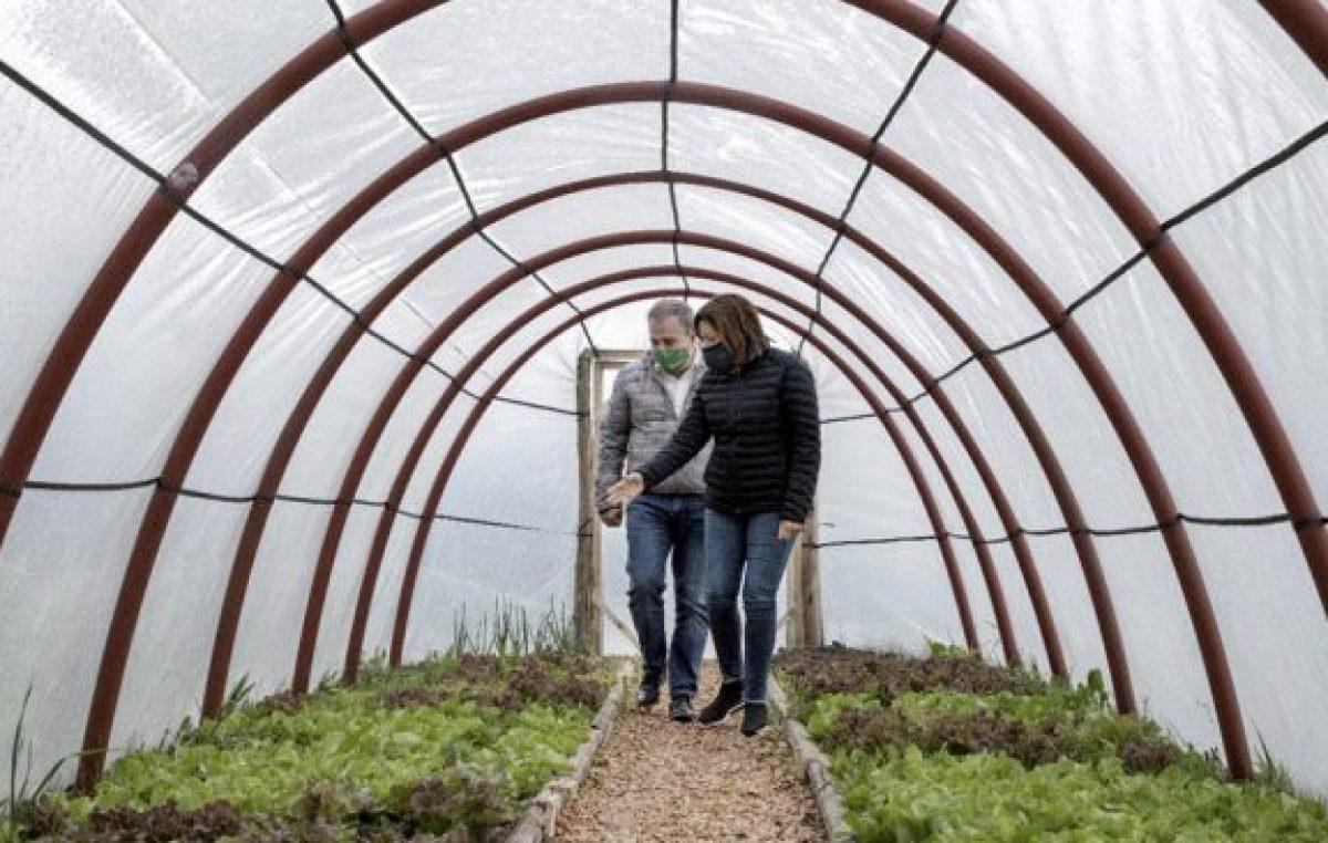 Construyen invernaderos solidarios que promuevan la soberanía alimentaria