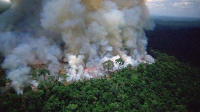 La Amazonía brasileña registró en agosto unos 30.000 focos de incendio
