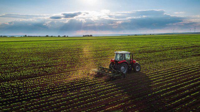 María Teresa aplicará un sistema de tasa diferenciada para beneficiar a pequeños propietarios de tierras