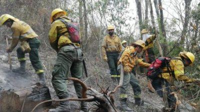 753 Ha consumidas por las llamas en el Parque Nacional Calilegua