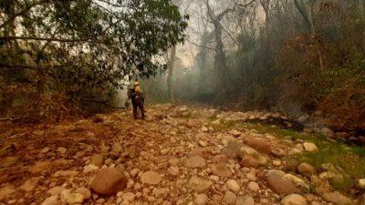 Son más de 18.000 las hectáreas quemadas en las Yungas jujeñas