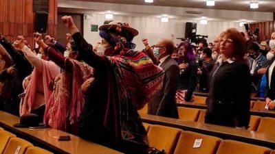 El nuevo parlamento boliviano tendrá una mayoría de mujeres y muchos jóvenes