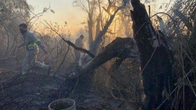 El fuego arrasó con las casas de los isleños del Cordón Industrial
