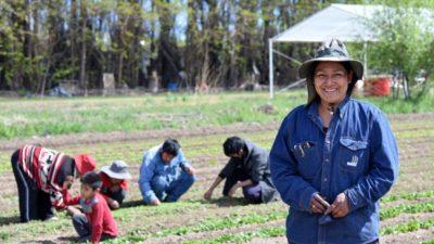 De la agricultura familiar salen la mayoría de los alimentos que comemos