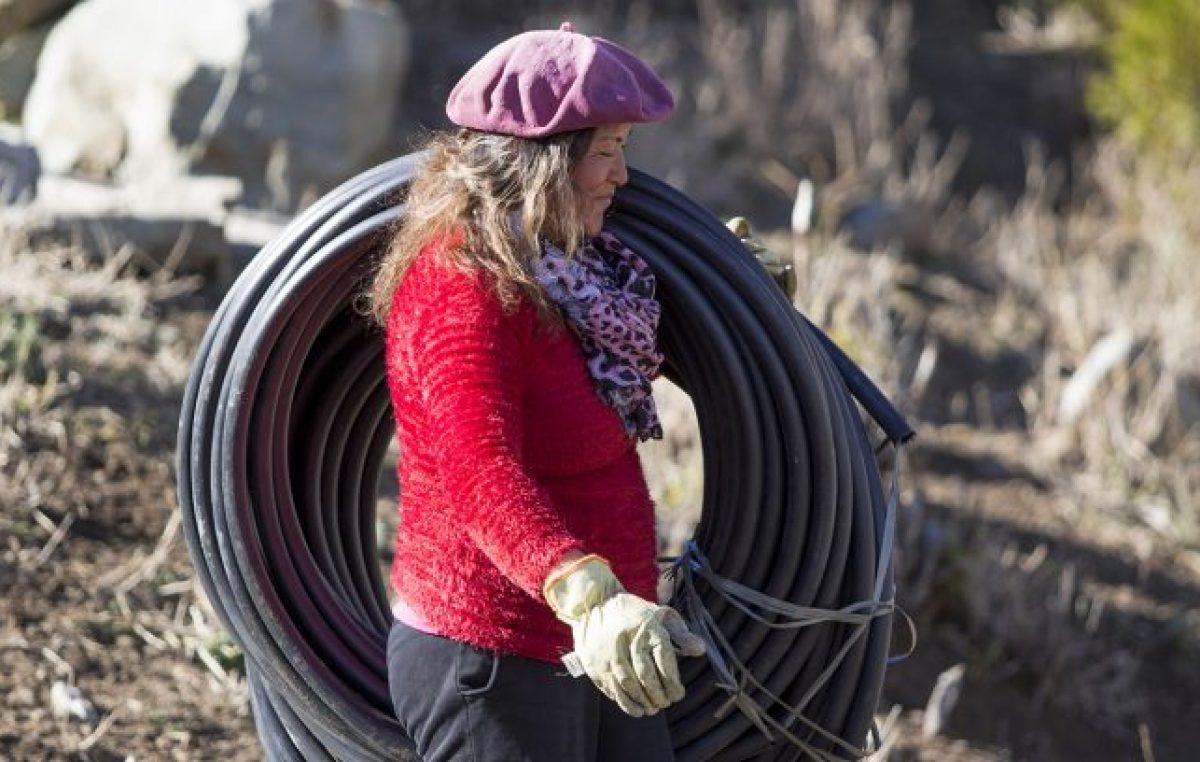 Neuquén homenajea a sus mujeres rurales