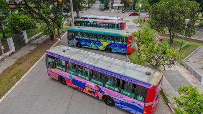 Tafí viejo habilitó la primera línea ecológica de transporte urbano