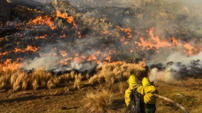 Incendios: Córdoba, después del desastre