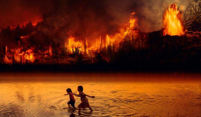 La deforestación del Amazonas alcanza con Bolsonaro su mayor nivel desde 2008