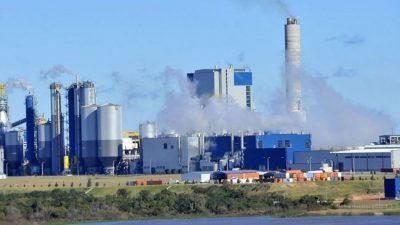 Gualeguaychú insistió al Gobierno nacional que la ex Botnia no cumple el fallo de La Haya