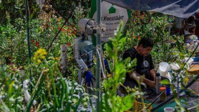 Vecinos en alerta porque el Gobierno porteño amenaza con desalojar su huerta comunitaria