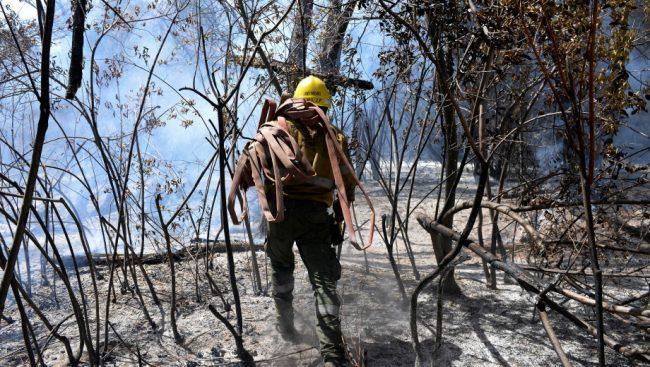 Incendio fuera de control en El Bolsón: los pobladores temen por sus casas