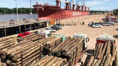 La exportación forestal a través de los puertos entrerrianos ha generado más de 3000 millones de pesos