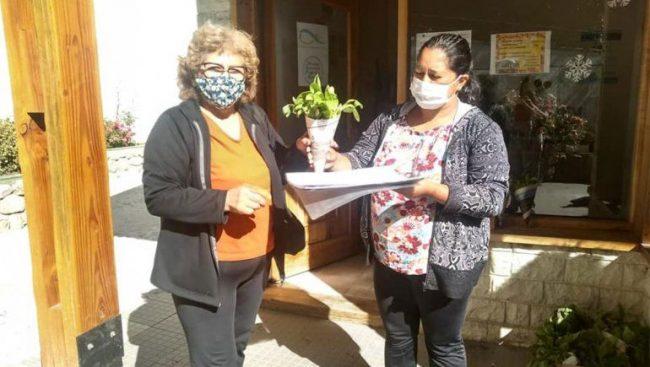 Aluminé: más de un centenar de familias se sumaron al Huerta en Casa