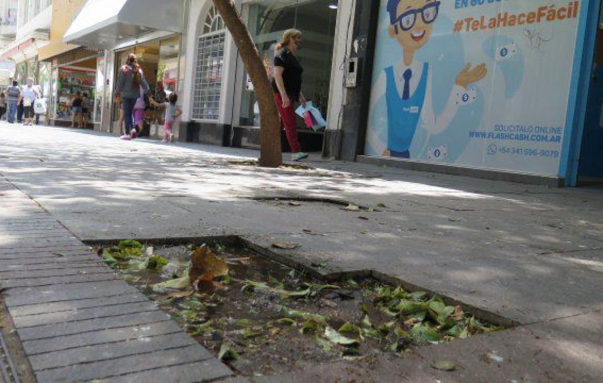 Para renovar el centro rosarino, el municipio quiere que vayan a vivir los jóvenes