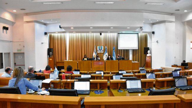La voz de quienes redactaron la Carta Orgánica de la capital de Neuquén