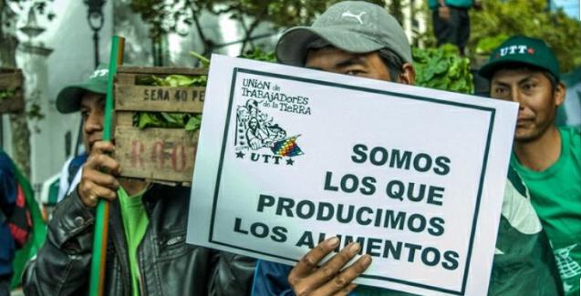 Así luchan en Río Colorado por el acceso a la tierra para producir alimentos sanos