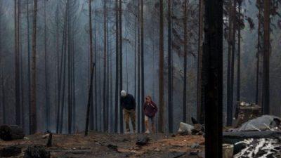 «Esto no terminó», advirtió el intendente de El Hoyo respecto a los incendios