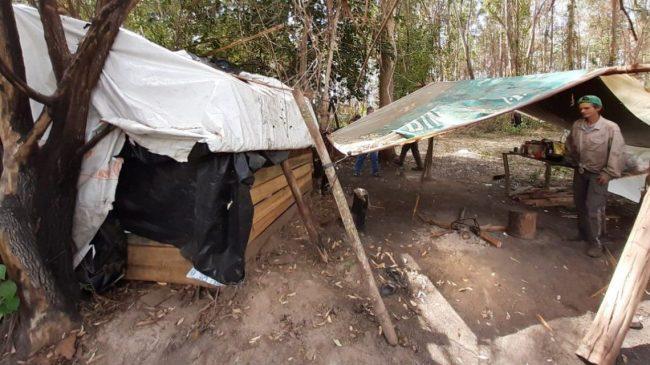 Trabajo esclavo: rescataron a más de 100 trabajadores rurales