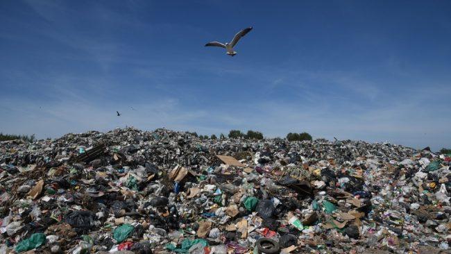Multas inéditas por contaminación