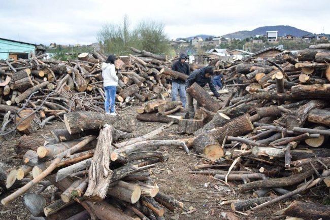 Comienza la entrega de leña del Plan Calor Municipal en Bariloche