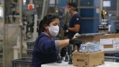 El Programa de Fomento generó más de mil puestos de trabajo genuino en Catamarca