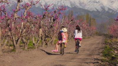 Cinco ciudades que todos quieren conocer en primavera